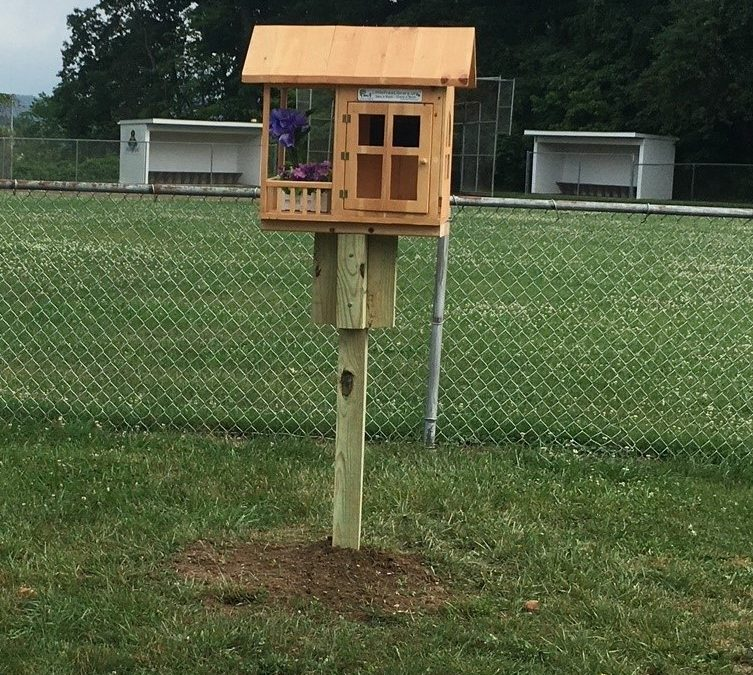 New Little Free Library at Cook School Park